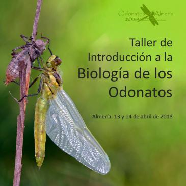 Taller de Introducción a la Biología de los Odonatos. Almeria 13 y 14 de abril